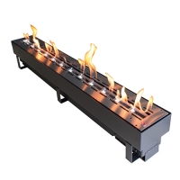 Биокамин Spartherm Ebios-fire Quadra Inside Automatic SL 1000
